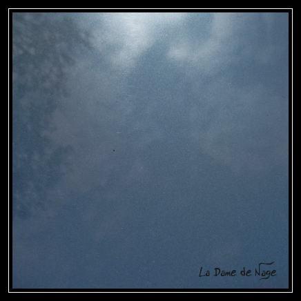 bleu_205_22_06_2010.jpg