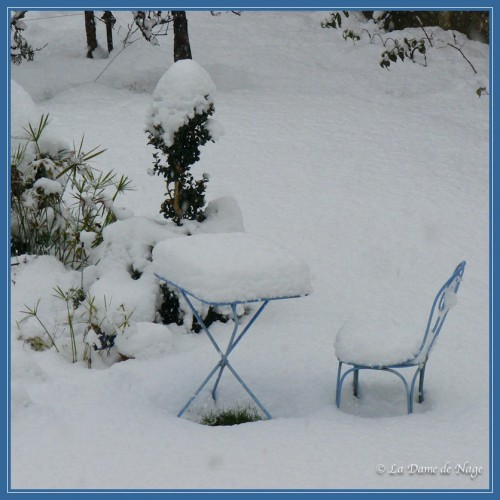 neige_1_12_2010.jpg