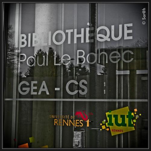 Paul Le Bohec, Petit bonheur