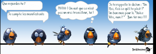 birdsdessines_1_mai.png